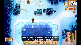 Stardew Valley, une alternative low cost à Animal Crossing... en mieux