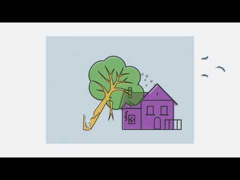 If A Tree Falls On Your House, Does Homeowners Insurance Cover It?   Allstate Insurance