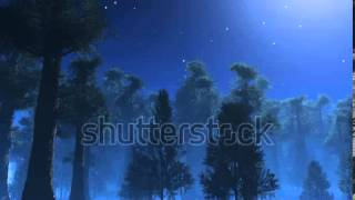 stock footage stars twinkling in night sky trees shaking in wind