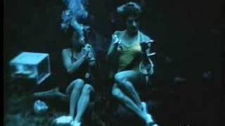 HOME MOVIES 1950 FLORIDA SEA WORLD