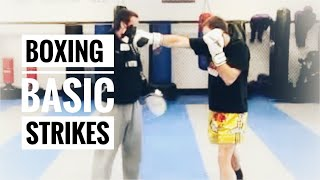 Boxing Lesson #1 - Basic Punches