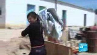 Les Chinois, nouvelle main d'œuvre algérienne