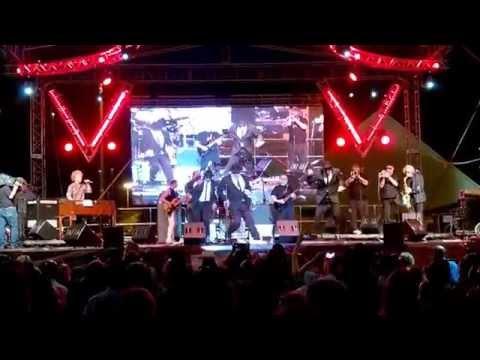 The Original Blues Brothers Band  Everybody Needs Somebody @ Curaçao BlueSeas Festival 2015