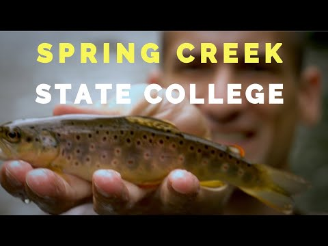 Fly Fishing The Famous Spring Creek PA