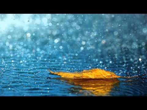 8 horas de som de chuva