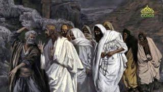 Читаем Евангелие вместе с Церковью 22 февраля 2020. Евангелие от Луки. Глава 21, ст.8-9,25-27,33-36