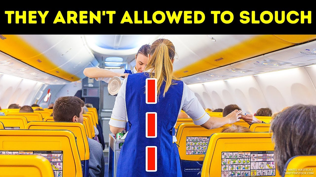 Download 20 Things Flight Attendants Can't Do at Any Price