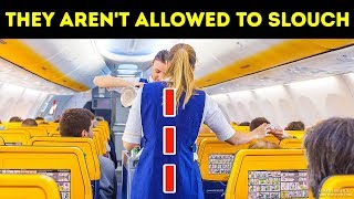 20 Things Flight Attendants Can't Do at Any Price