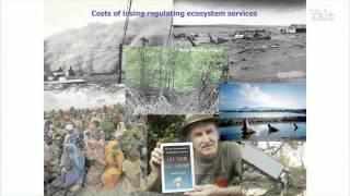 Biodiversity, Ecosystems, & Ecosystem Services: TEEB@YALE