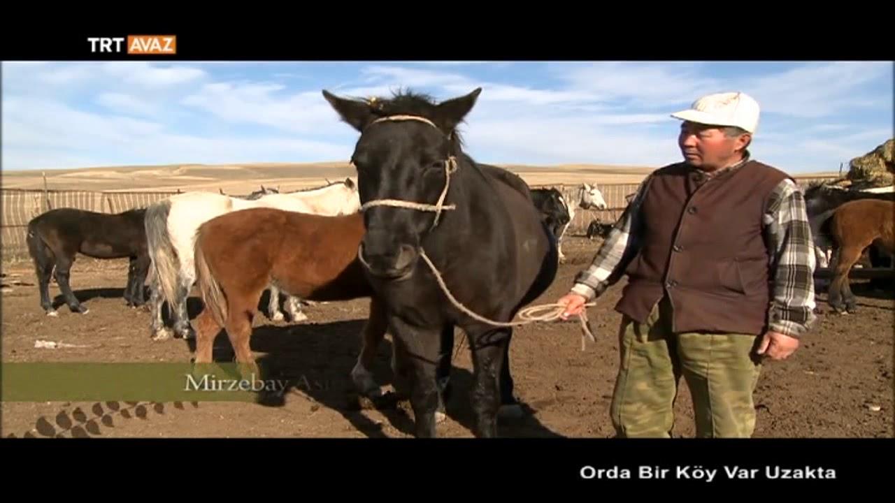 Atı Seven Yaya Yürümez Kırgızistan Orda Bir Köy Var Uzakta Trt