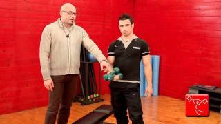 Come potenziare i dorsali e il trapezio: esercizi da fare in casa come in palestra