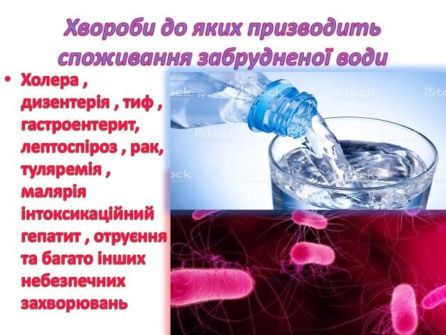 10 12   Бенцак Тетяна Богданівна