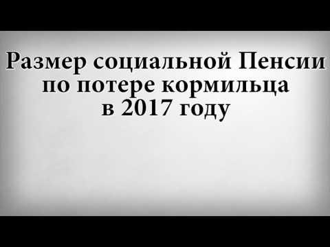 СОЦИАЛЬНАЯ ПЕНСИЯ ПО ПОТЕРЕ 2017