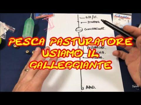 in magazzino offerte esclusive dai un'occhiata PESCA PASTURATORE MONTATURA 1 - YouTube