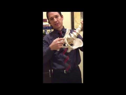 Dr. Derek Taylor D.C. - How to fix hip pain w/ energy pressure wave technology