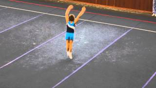 Спортивная гимнастика вольные 1 юн. разряд