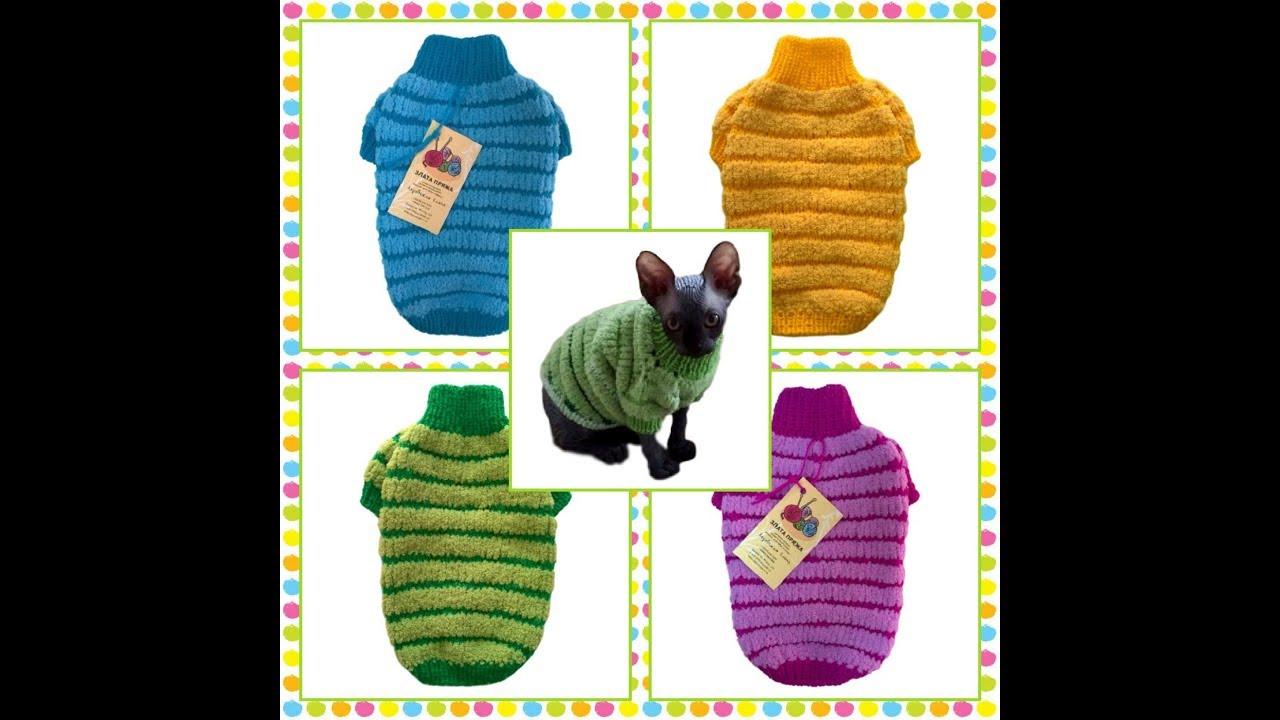 6 плюшевые свитера для сфинксов Youtube