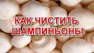 Как чистить шампиньоны(Как правильно чистить шампиньоны? Шампиньон - это одни из немногочисленных сортов среди грибов, которые..., 2014-07-02T17:22:06.000Z)