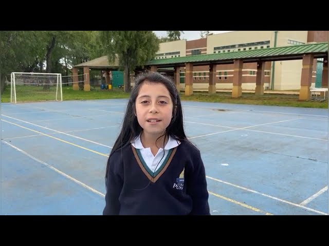 Intercambio remoto con alumnos de la India - 3° Básico Bilingüe Pumahue Temuco