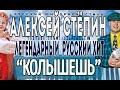 Alexey Stepin (Алексей Стёпин) Только Ты Меня Колышешь (live)