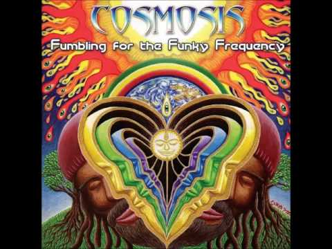Cosmosis - Beguiling illusions