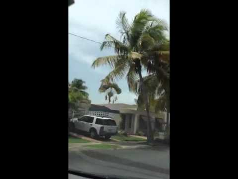 Our community in Puerto Rico
