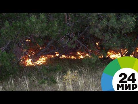 На Чукотке горит почти 14 тысяч гектаров леса