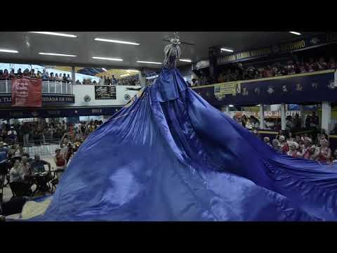 Estrela do Carnaval: apresentação da Estácio de Sá na festa de 2019