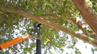 """REVIEW: Fiskars 18"""" Bypass Loppers with PowerGear technology"""