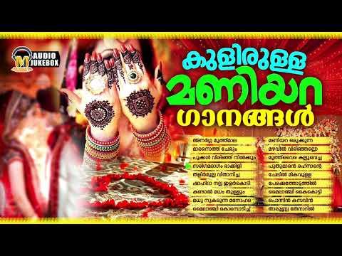 കേട്ടാൽ കുളിരു കോരുന്ന മണിയറ ഗാനങ്ങൾ | Selected Hit Mappilappattukal | New Mappila Songs