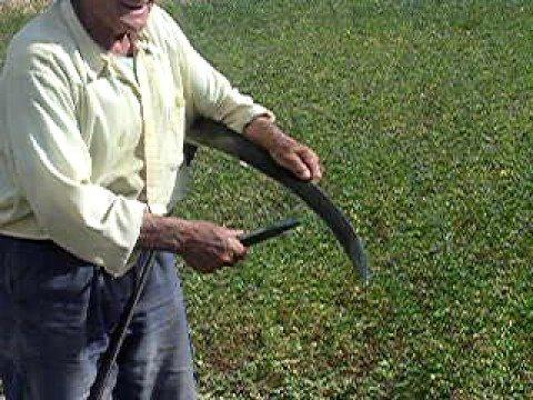 Resultado de imagen de utensilio para picar la dalla