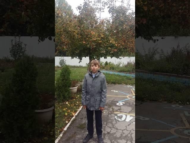 Изображение предпросмотра прочтения – АлександрКовалев читает произведение «Льет без конца. В лесу туман.» И.А.Бунина