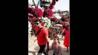Beatiful flower videoshow