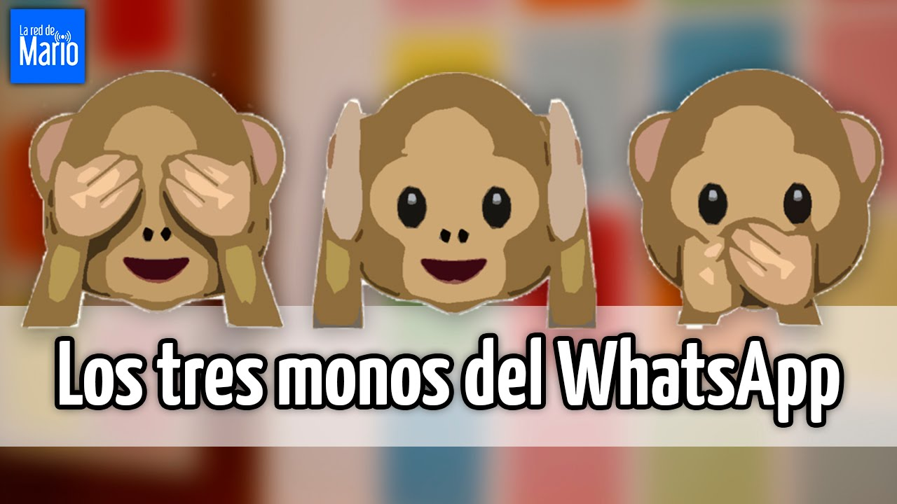 Los tres monos del WhatsApp - YouTube 31628eced6166