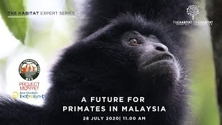 Webforum: A Future for Primates in Malaysia