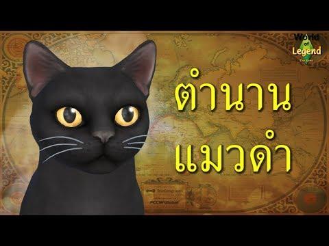 ตำนาน ความเชื่อ แมวดำ WOL | สัตว์ในตำนาน | World of Legend โลกแห่งตำนาน