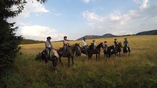 RAJDY KONNE POLSKA Horse Trek POLAND