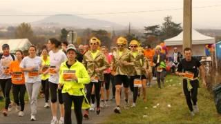 marathon du beaujolais 2012