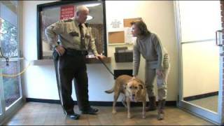 Jefferson County's New Canine Bailiff