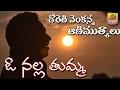 Download Goreti Venkanna - O Nalla Thumma | Telugu Folk Songs | Telangana Folk Songs | Janapada Geethalu MP3 song and Music Video