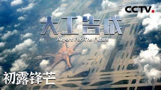 """《大工告成 北京大兴国际机场》第二集 """"凤凰""""如何展翅?揭秘大兴国际机场庞大的的智慧运营体系!【CCTV纪录】 - YouTube"""