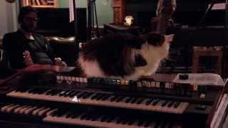 Meursault - The Organ Grinder