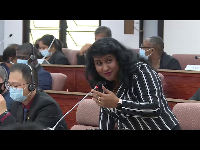Beantwoording Minister Bronto Somohardjo in het parlement begrotingsbehandeling 2020 DL4