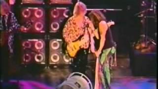 Aerosmith Janie's Got a Gun live Germany '97