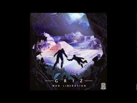 GRiZ - Mr B (ft. Dominic Lalli)