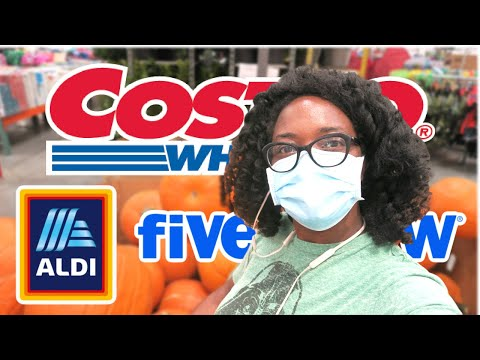 GROCERY HAUL // Costco Haul and Walmart Haul // SHOP WITH ME at FIVE BELOW