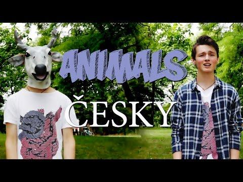 "Maroon 5 - Animals ČESKY ""ZVÍŘATA"""