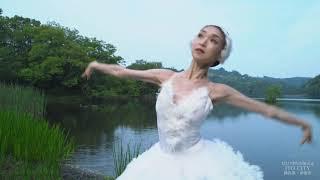 8K「針山愛美 ・伊豆の大地を舞う」(Ballet Emi Hariyama × Izu,Ito,Japan)