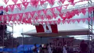 Agrupación Los Tokes, Fresa Salvaje, Merengue