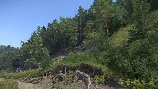 Kingdom Come: Deliverance - Warum uns der Wald im Spiel beeindruckt